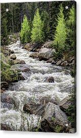 Spring Runoff Acrylic Print by G Wigler