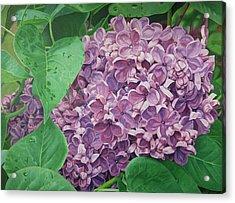 Spring Scent Acrylic Print