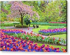 Spring Season Acrylic Print