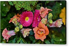 Spring Show 15 Snapdragons And English Daisy Acrylic Print by Janis Nussbaum Senungetuk