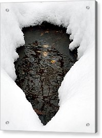 Acrylic Print featuring the photograph Spring Snow by EDi by Darlene