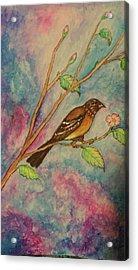 Spring Song Acrylic Print