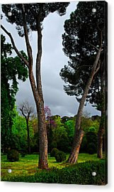 Spring Storm Over Park Retiro Acrylic Print by Georgia Nick