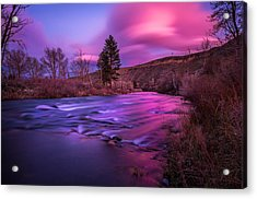 Acrylic Print featuring the photograph Spring Sunset Along The Truckee River Reno Nevada by Scott McGuire