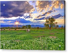 Spring Sunset Over The Rockies Acrylic Print by Scott Mahon