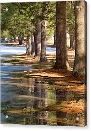 Spring Thaw  Acrylic Print by Betty  Pauwels