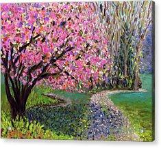 Spring Tree At New Pond Farm Acrylic Print