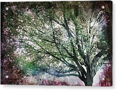 Acrylic Print featuring the painting Spring Tree by Gray  Artus