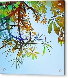 #spring #tree #leaves With #watercolor Acrylic Print