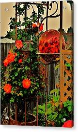 Spring Trellis Acrylic Print