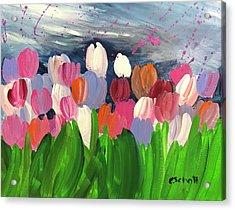 Spring Tulips Acrylic Print