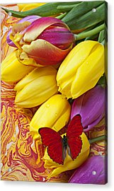 Spring Tulips Acrylic Print by Garry Gay
