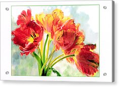Spring Tulips Acrylic Print by Margaret Hood