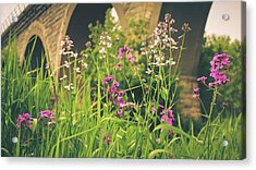 Spring Under The Arches Acrylic Print