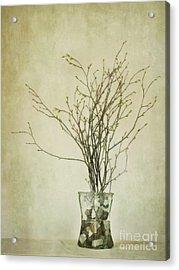 Spring Unfolds Acrylic Print