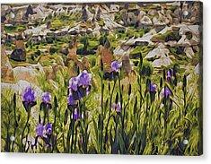 Spring Valley, Cappadocia Acrylic Print