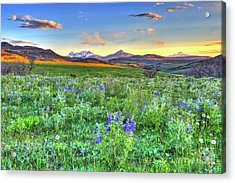 Spring View Acrylic Print by Scott Mahon