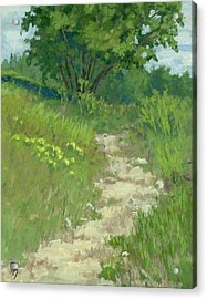 Spring Walk Acrylic Print by David King