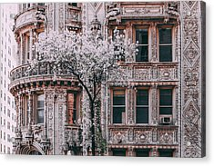 Spring West 58 And 7th Acrylic Print by Vincent James