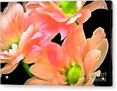 Spring Whispers Acrylic Print by Krissy Katsimbras