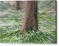 Spring Wild Flower Explosion Acrylic Print by Dirk Ercken