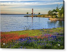 Spring Wildflowers Of Lake Buchanan Acrylic Print