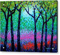 Spring Woodland Acrylic Print by John  Nolan