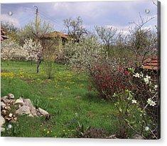 Spring Yard Acrylic Print by David Du Hempsey