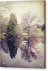 Two Trees Reflected - Textured Acrylic Print by Marilyn Wilson