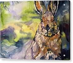 Acrylic Print featuring the painting Springs Almost Hare by P Maure Bausch