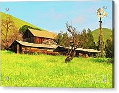 Springtime Barn San Francisco Bay Acrylic Print by Gus McCrea