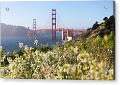 Acrylic Print featuring the photograph Springtime On The Bay by Everet Regal