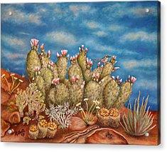 Springtime Succulence Acrylic Print by Kathy Shute