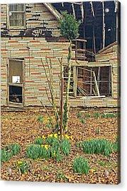 Springtime Acrylic Print by Susan Leggett