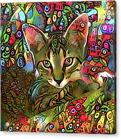 Sprocket The Tabby Kitten Acrylic Print