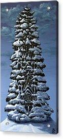 Spruce Acrylic Print
