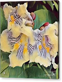 Spun Gold Acrylic Print by Kathie Chicoine