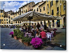 Square Amphitheater In Lucca Italy Acrylic Print by David Smith