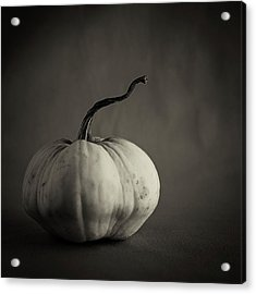 Acrylic Print featuring the photograph Squash by Tim Nichols