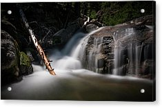 Acrylic Print featuring the photograph Squaw Creek by Sean Foster