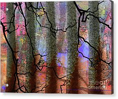 Squiggles And Lines Acrylic Print by Robert Ball