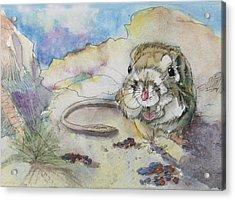 Squiggy Acrylic Print by Gina Hall