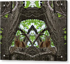 Squirrel Guardians Of The Doorway To A Green World Acrylic Print