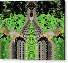 Squirrels On Fence In Surreal World Acrylic Print
