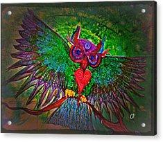 Ss Owl Acrylic Print