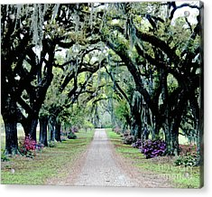 St Francisville Plantation Acrylic Print