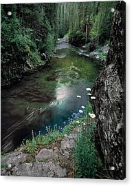 St Joe River Acrylic Print