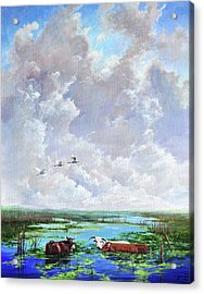 Acrylic Print featuring the painting St. John's Cows by AnnaJo Vahle