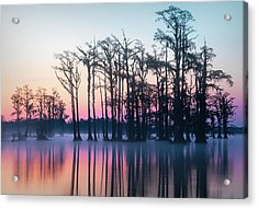 Acrylic Print featuring the photograph St. Patrick's Day Sunrise by Cindy Lark Hartman
