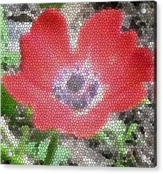 Acrylic Print featuring the photograph Stain Glass Anemone by Debra     Vatalaro
